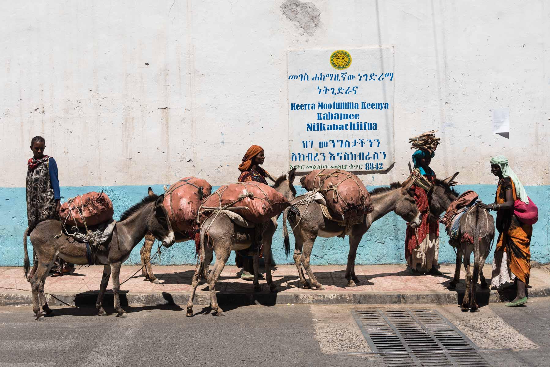 Christian Meixner Fotografie, Fotograf Zürich, Äthiopien, Harar, Esel, Reisen, Reisefotografie, Frauen