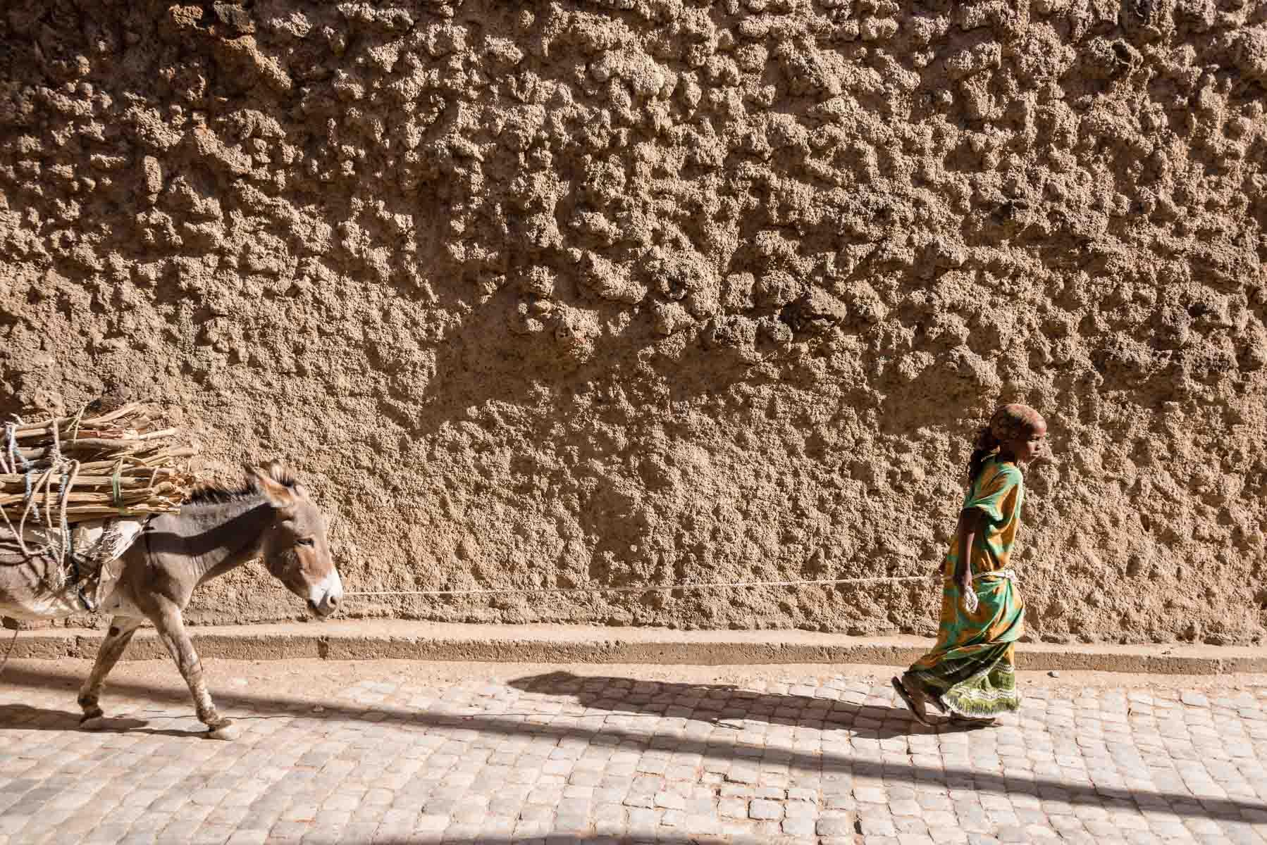 Christian Meixner Fotografie, Fotograf Zürich, Äthiopien, Harar, Esel, Mädchen, Reisen, Reisefotografie